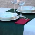 115 MANTELES DESECHABLES 120 x 200 cm Verde Abeto
