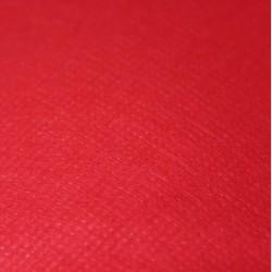 Mantel desechable Rojo Individual 30x40cm de No Tejido Polipropileno 50grs/m2. 500 uds.